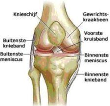herstel kraakbeen operatie knie